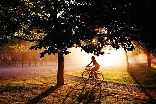Велосипедные прогулки с пользой